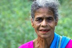 Sri Lanka Sberacka caje