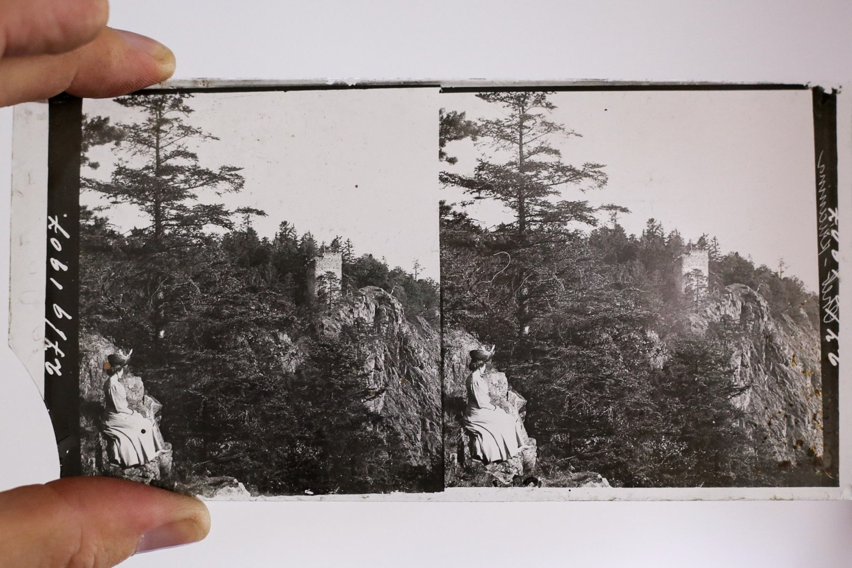 R. Paďouk skleněná deska stereofotografie